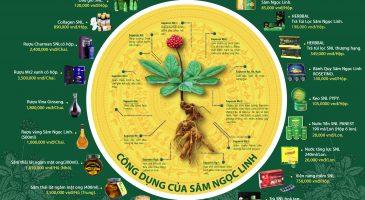 Sâm Ngọc Linh – Đặc ân của Đất Trời cho sức khỏe & vẻ đẹp
